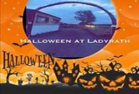 Image result for pumpkin patch Ladyrath