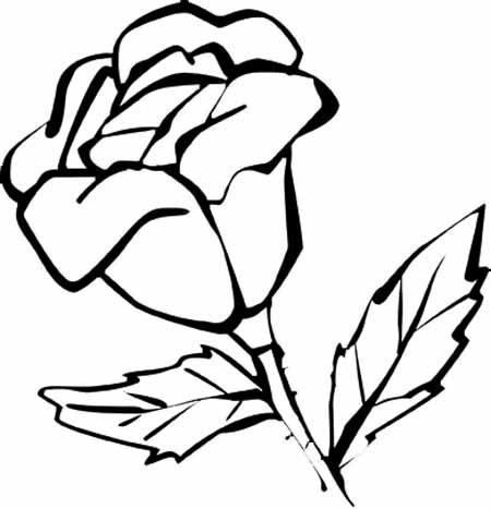flower coloring pages from nature s