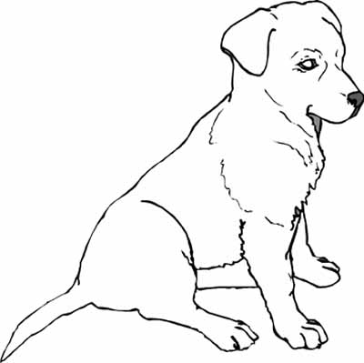 puppy coloring pages for puppy lovers and creative kids