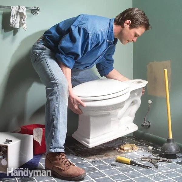 Image Result For What Can You Put Down A Toilet To Unclog It