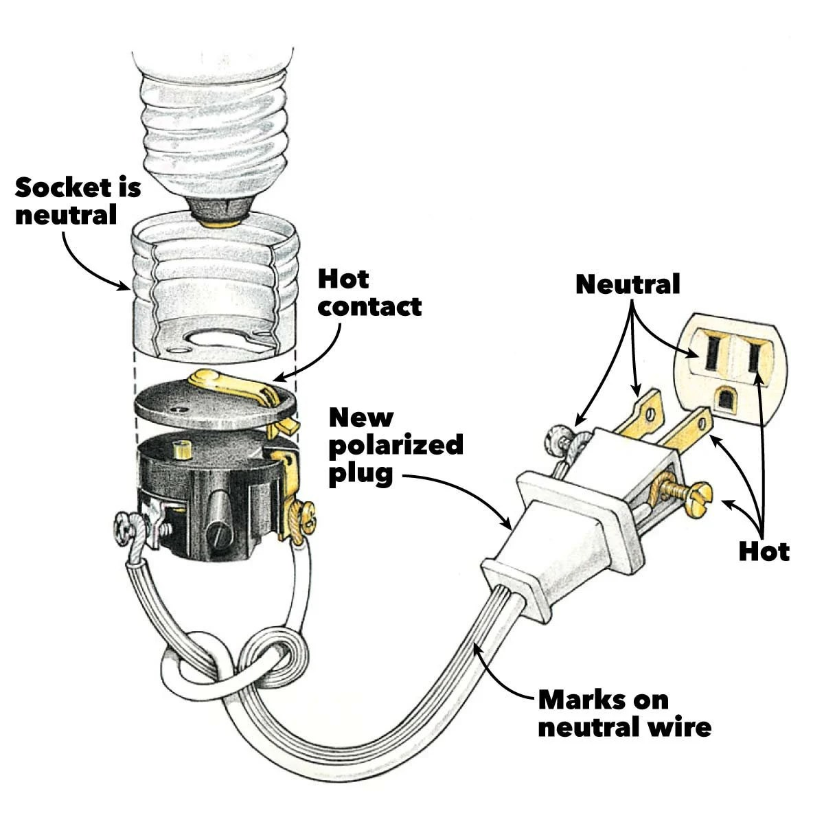 Diagram For Wiring A Light Bulb L Socket On Light Bulb