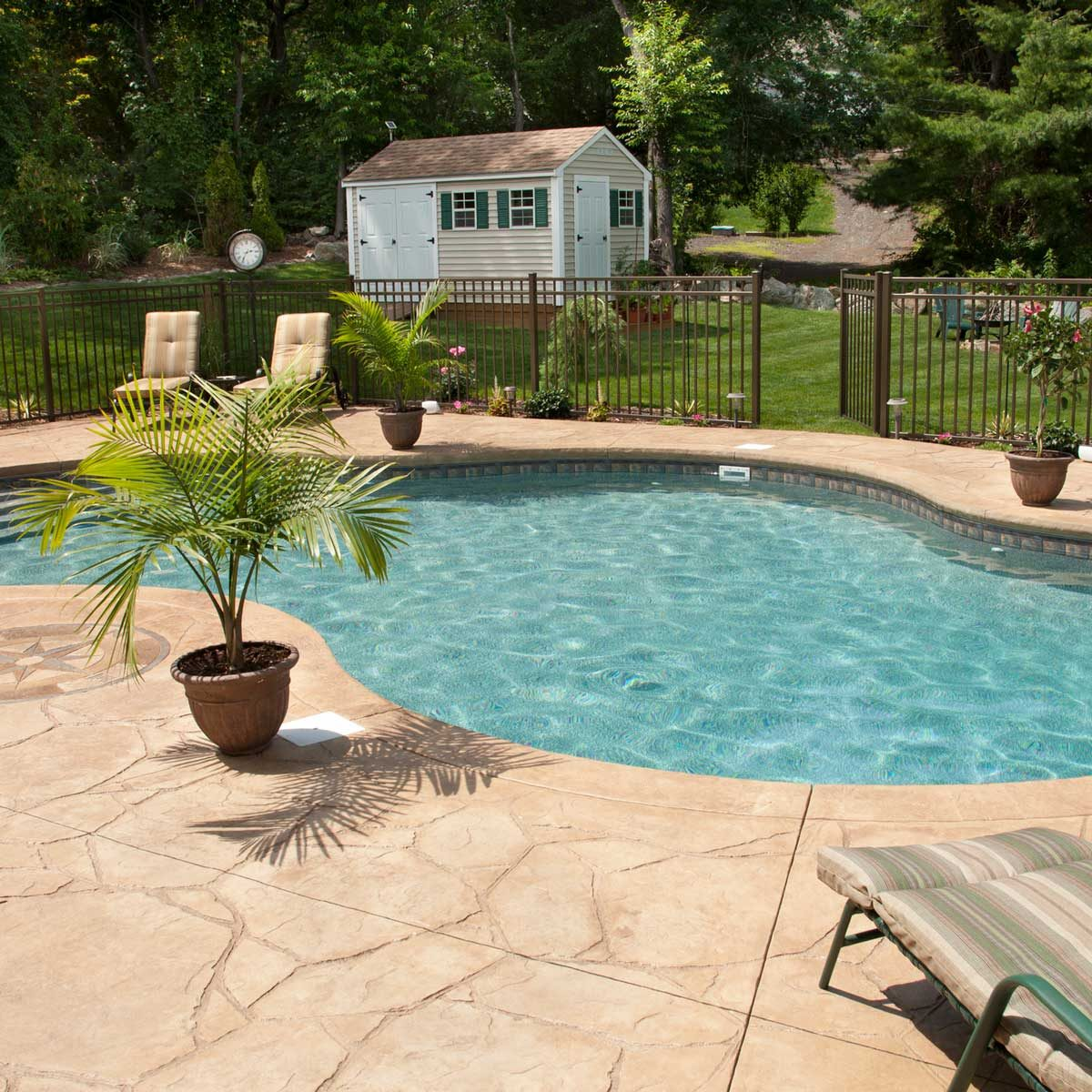 should i get a pool what to know