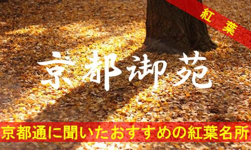 kouyou-kyouto-gyoen-2756