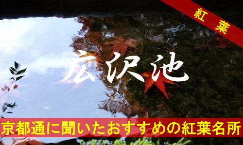 kouyou-kyouto-hirosawanoike-2599