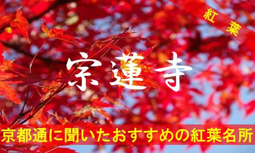 kouyou-kyouto-sourenzi-2107