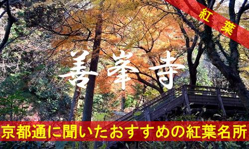 kouyou-kyouto-yoshiminedera-2268
