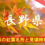 長野県の気になる紅葉名所と見頃時期は?