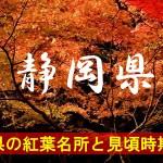 静岡県の気になる紅葉名所と見頃時期は?