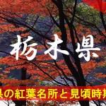 栃木県の気になる紅葉名所と見頃時期は?