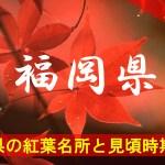 福岡県の気になる紅葉名所と見頃時期は?