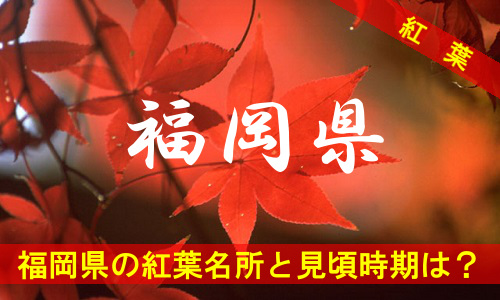 kouyou-fu-3-3134