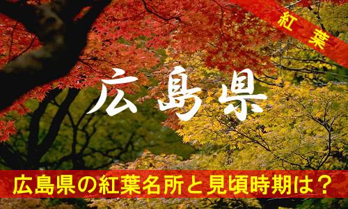 kouyou-hi-3099