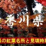 香川県の気になる紅葉名所と見頃時期は?