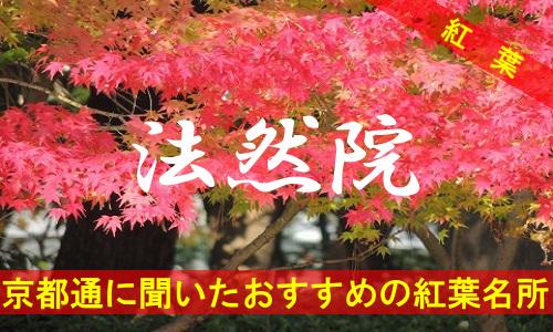 kouyou-kyouto-hounenin-3596