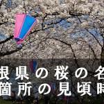島根県の松江城など桜名所34箇所の見頃時期