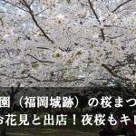 舞鶴公園(福岡城跡)の桜まつり期間のお花見と出店!夜桜もキレイ