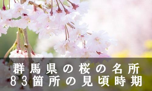 sakura-37-6879