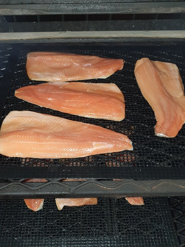 Trout on grillaholics ptfe mesh mat in smoker