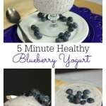 5 Minute Healthy Blueberry Yogurt