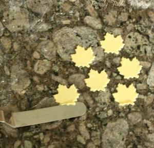 Autumn Gumpaste Leaves