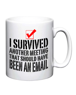 I Survived Another Meeting