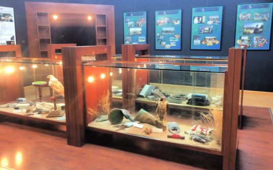 Abu Dhabi Falcon Hospital history and displays as part of their daily 2-hour tours