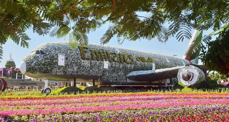 Dubai Miracle Garden floral A380