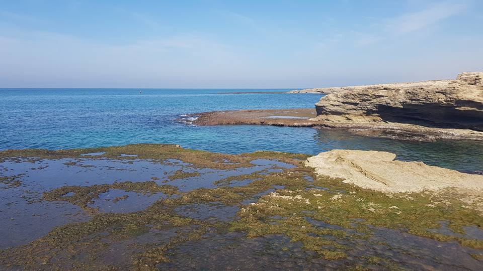 Dor Habonim Coast