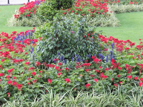 Gardens along Princess Diana Trail