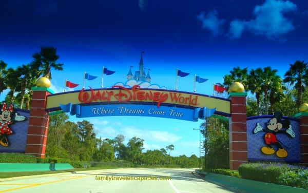 Disney World entry
