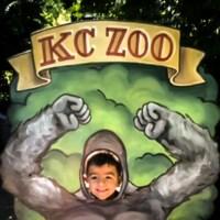 Cash as a gorilla at the Kansas City Zoo