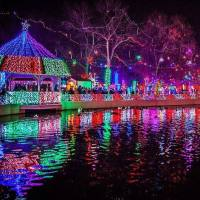 Christmas Lights at Rhema reflecting off a pond