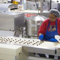 Chocolate Chocolate Chocolate Factory Worker