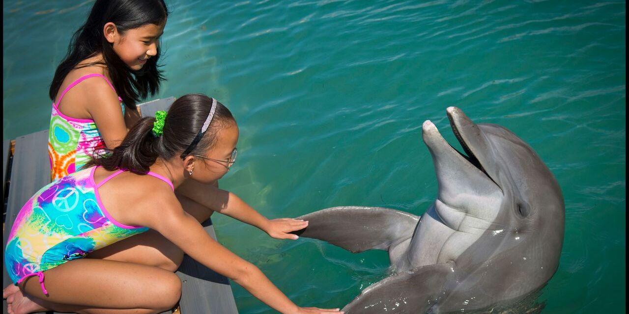 Courtesy of Hawks Cay Resort