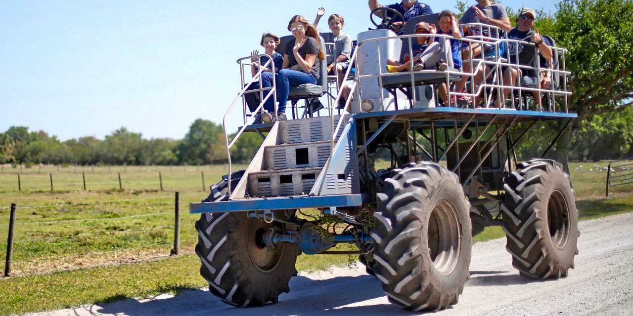 Swamp Buggy at Westgate River Ranch; Courtesy of Westgate River Ranch