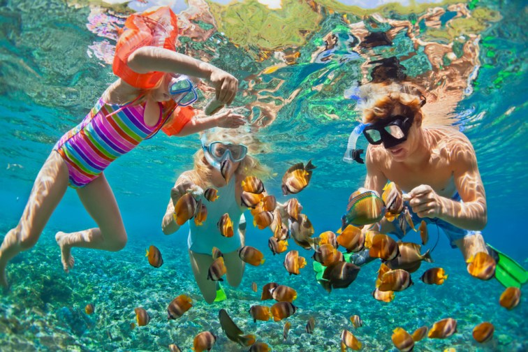Father and 2 daughters snorkeling with fish