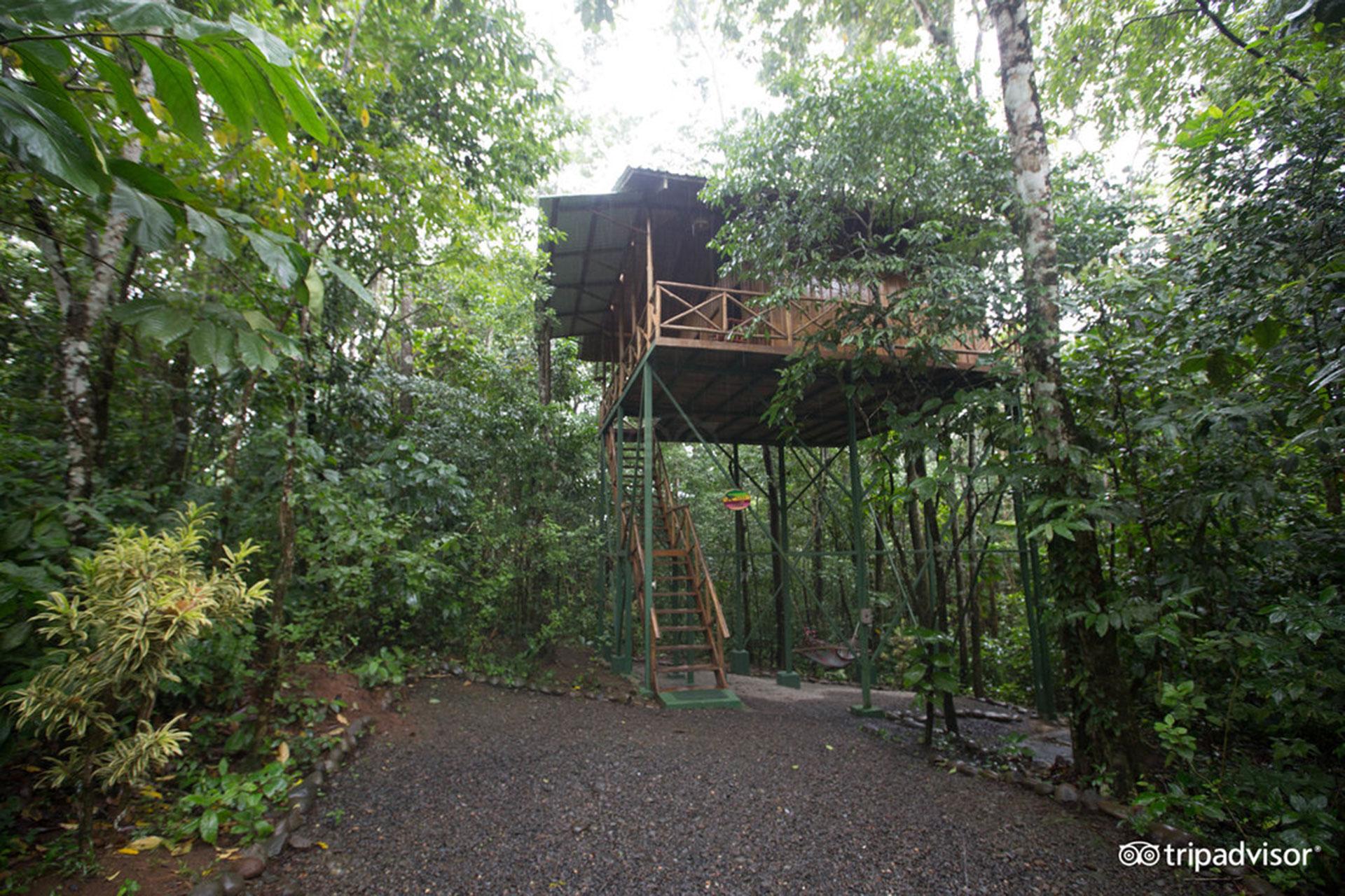 Treehouse at Tree Houses Hotel in Costa Rica; TripAdvisor Expert Photo