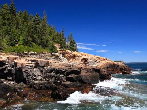 Acadia National Park Family Vacation