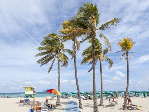 Hollywood Beach, Florida Family Vacations; Courtesy of Philip Lange/Shutterstock.com