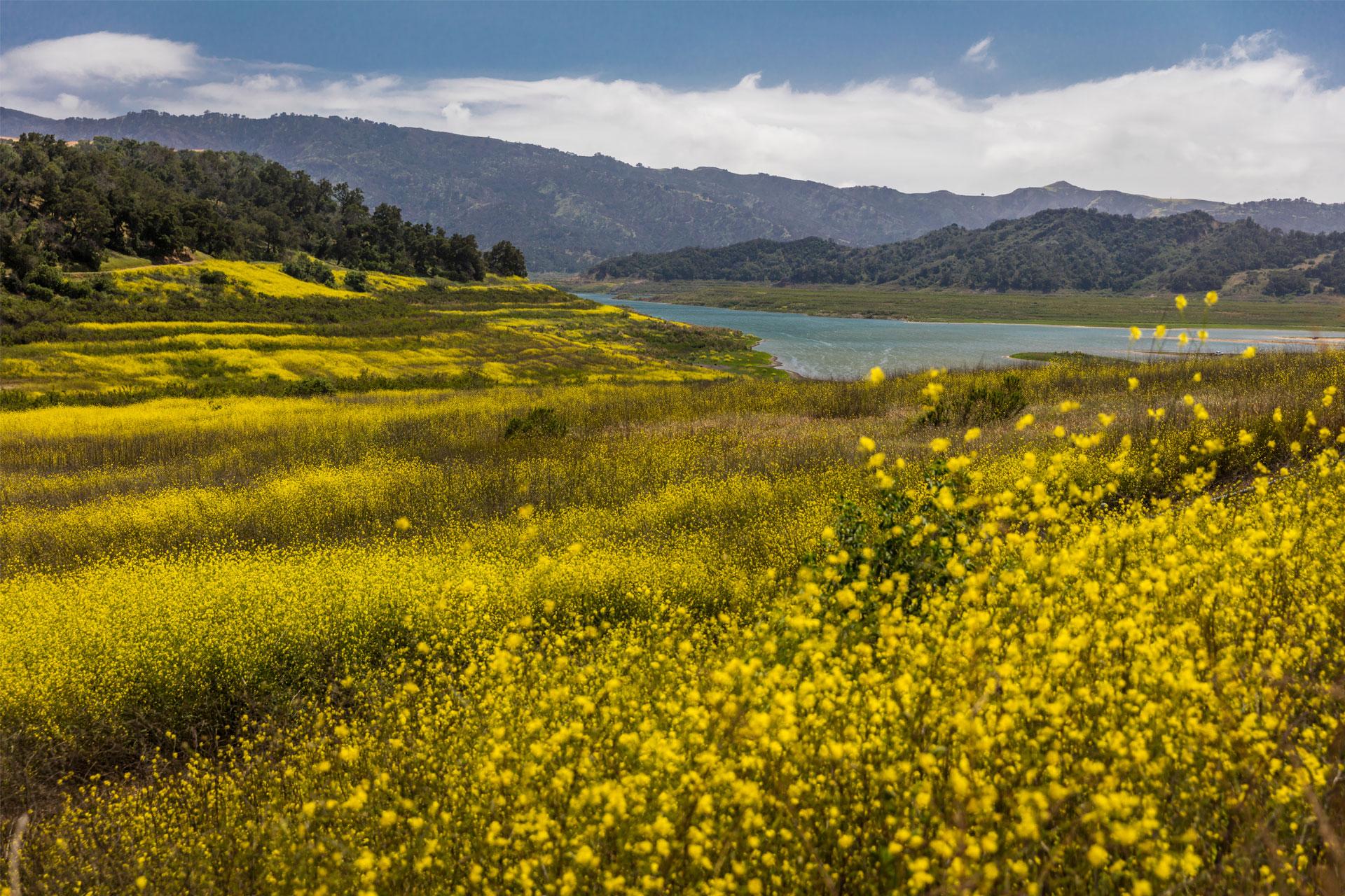Ojai, California; Courtesy of Joseph Sohm/Shutterstock.com