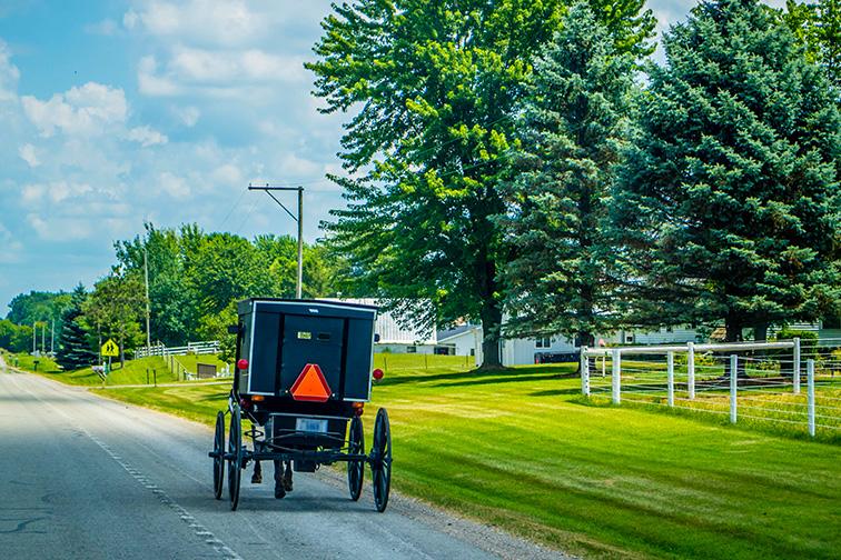 Shipshewana, IN Amish buggy; Courtesy of Cheri Alguire/Shutterstock