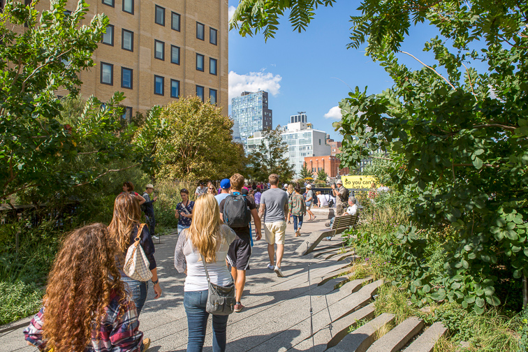 Stroll Down the High Line  ;Courtesy of NYC & Company