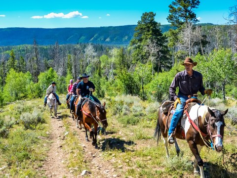 Guided horseback riding tour on mountain trail in Medicine Bow National Forest.; Courtesy of Sandra Foyt/Shutterstock