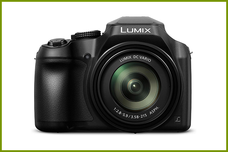 Panasonic Lumix FZ80; Courtesy Amazon