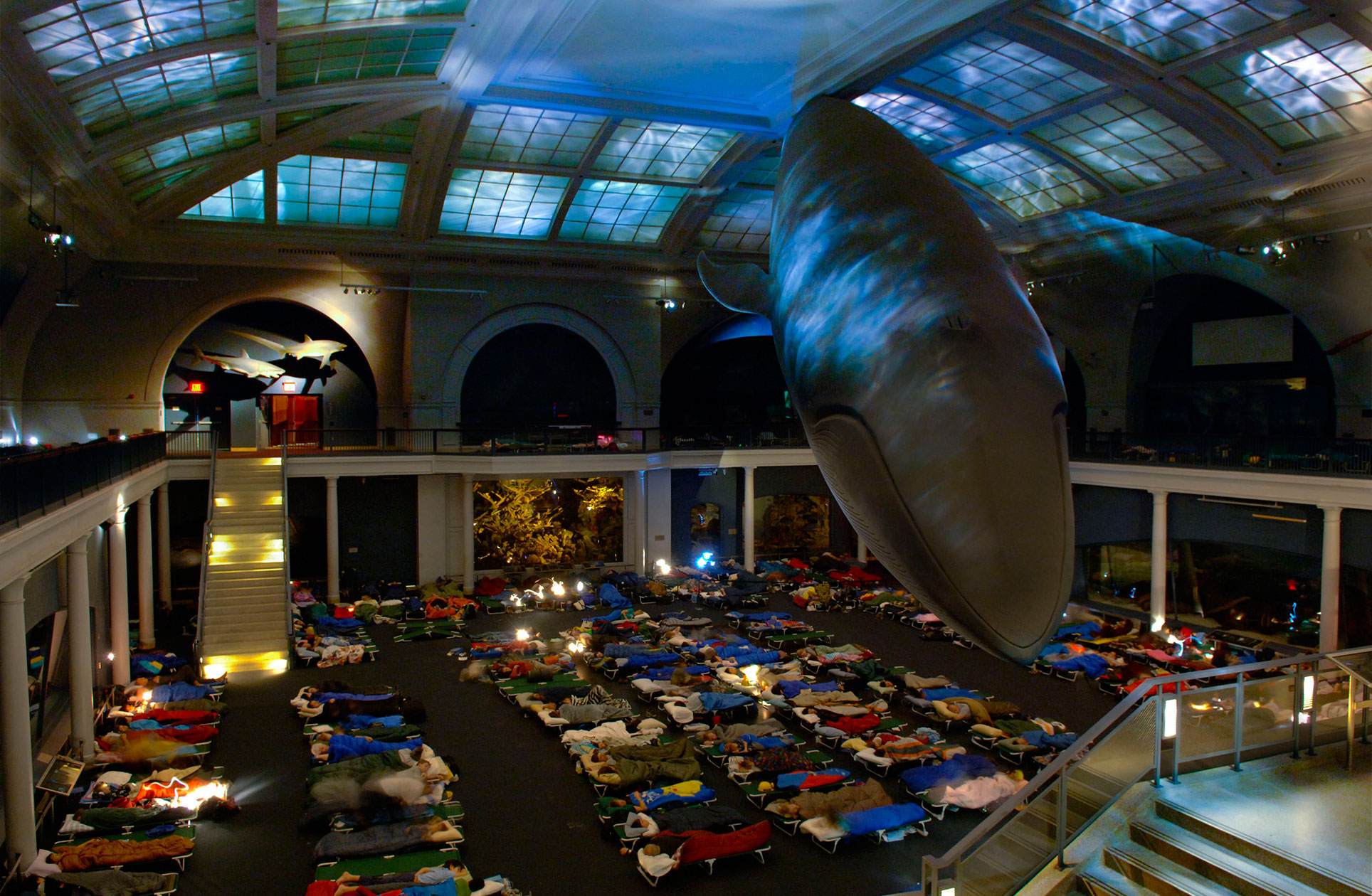 Night at the Museum Sleepover