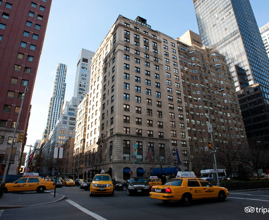 70 Park Avenue Hotel A Kimpton Hotel New York City Ny What To Know Before You Bring Your Family