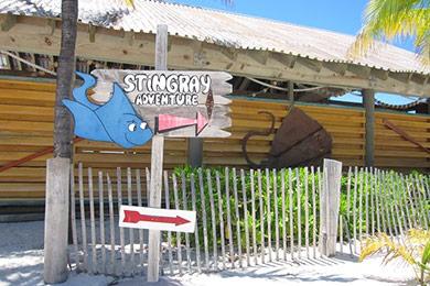 Castaway Cay's Stingray Adventure sign.