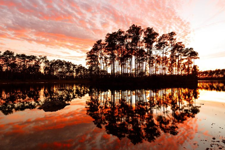 Everglades National Park in Florida in the Winter