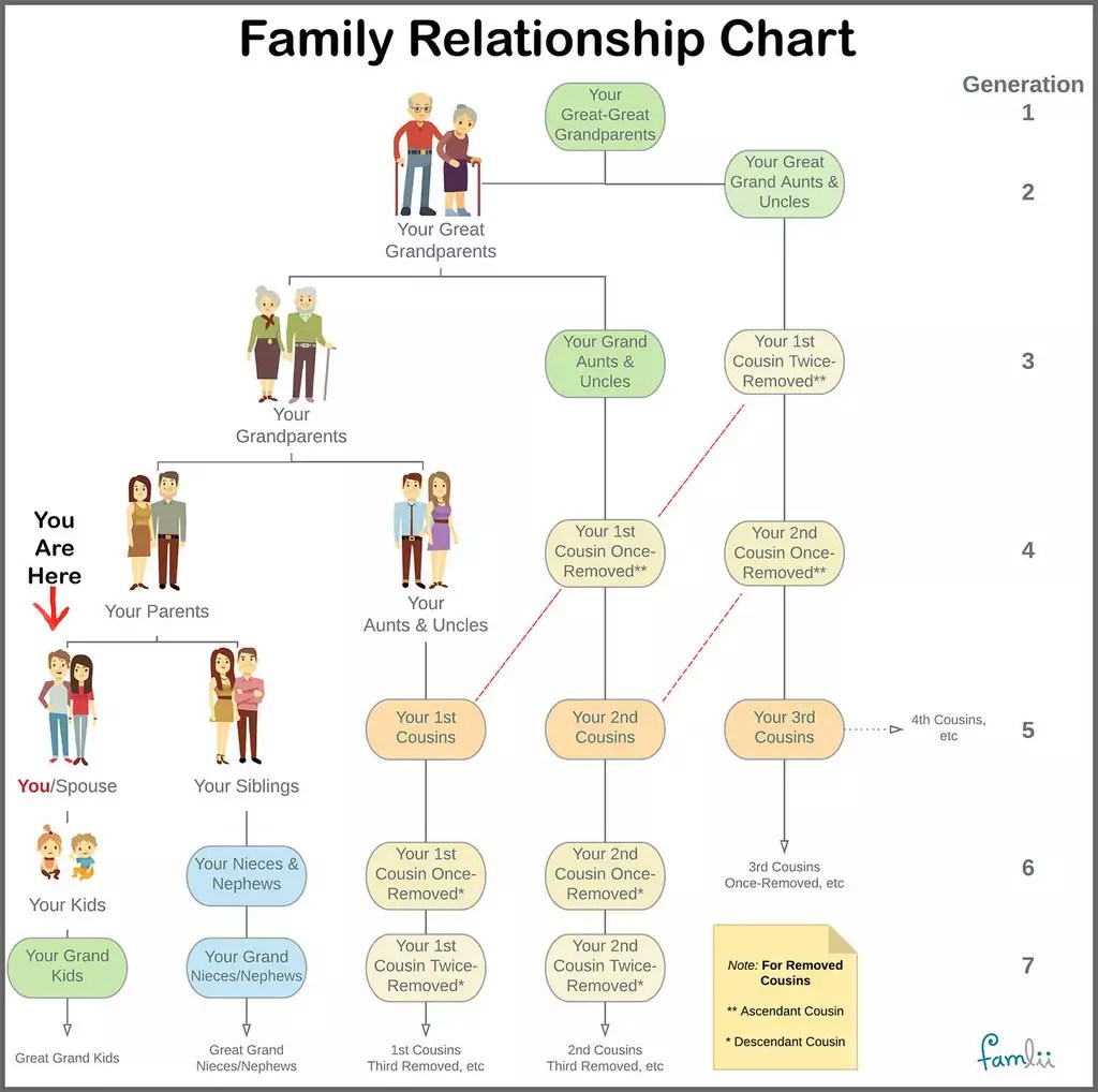 Family Relationship Chart Famlii
