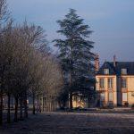 Balade hivernale dans le parc du château de Plaisir (Yvelines)